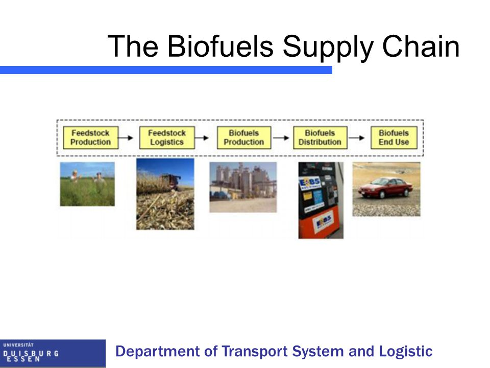 Department of Transport System and Logistic The Biofuels Supply Chain