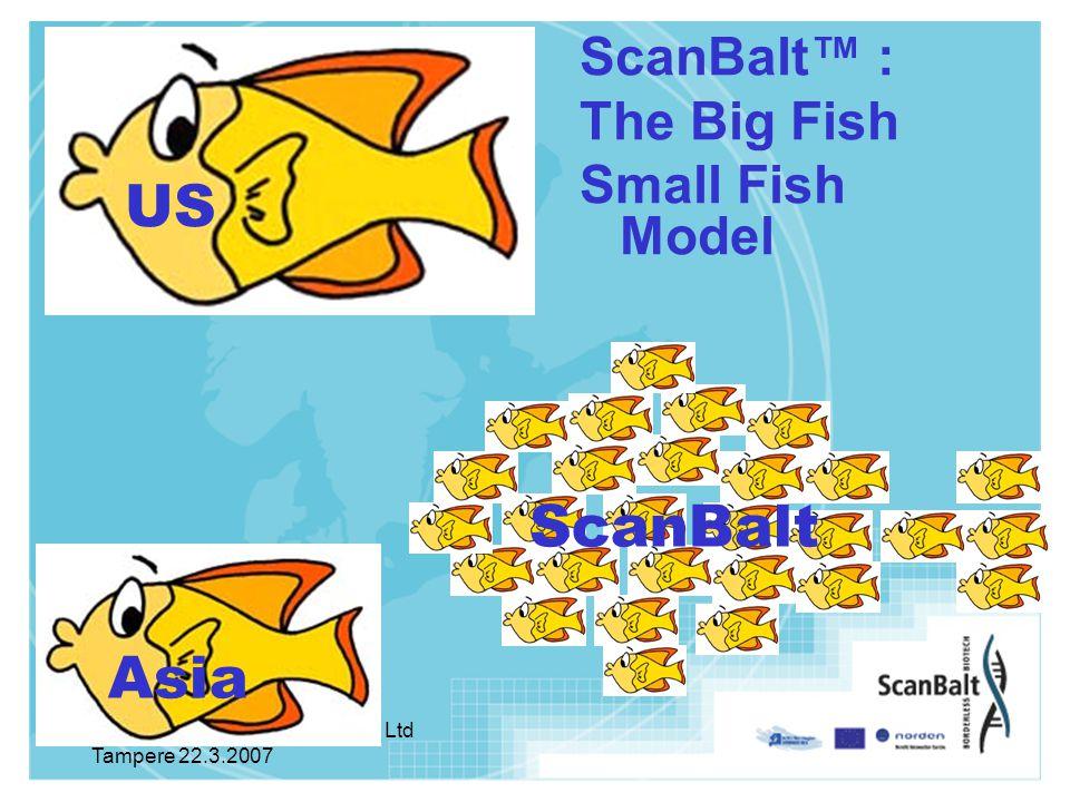 Hanna Halme, Turku Bio Valley Ltd Tampere 22.3.2007 ScanBalt™ : The Big Fish Small Fish Model Asia ScanBalt Silicon Valley US