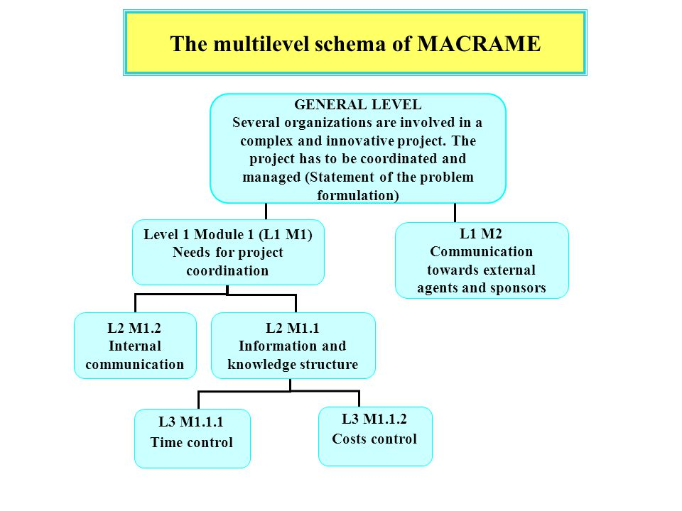The multilevel schema of MACRAME GENERAL LEVEL Several organizations are involved in a complex and innovative project.