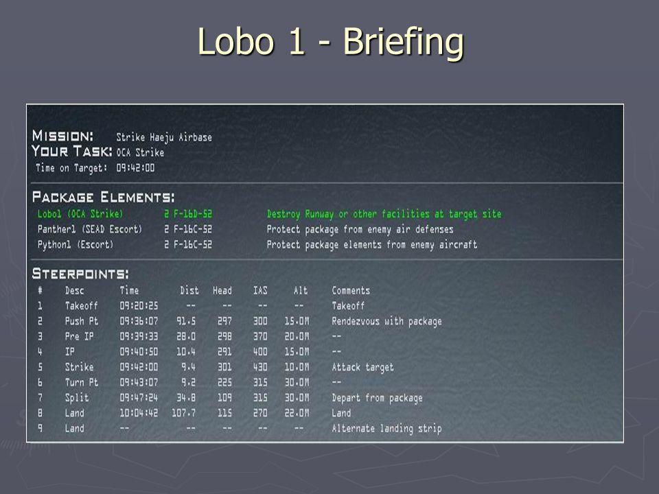 Package 1610 ► Lobo 1 (2x F-16D-52)  OCA-Strike ► Panther 1(2x F-16C-52)  SEAD-Escort ► Python 1(2x F-16C-52)  Escort