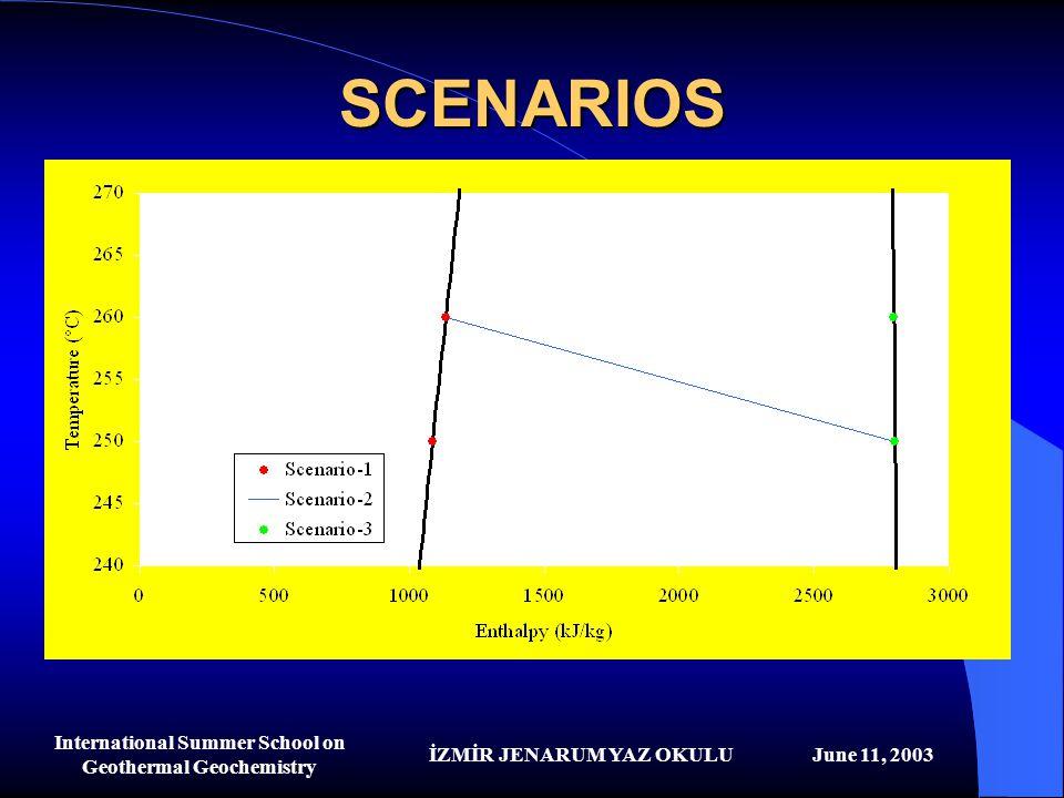 İZMİR JENARUM YAZ OKULUJune 11, 2003 International Summer School on Geothermal Geochemistry SCENARIOS