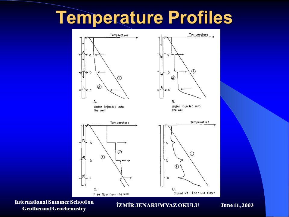 İZMİR JENARUM YAZ OKULUJune 11, 2003 International Summer School on Geothermal Geochemistry Temperature Profiles