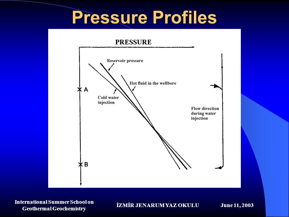 İZMİR JENARUM YAZ OKULUJune 11, 2003 International Summer School on Geothermal Geochemistry Pressure Profiles