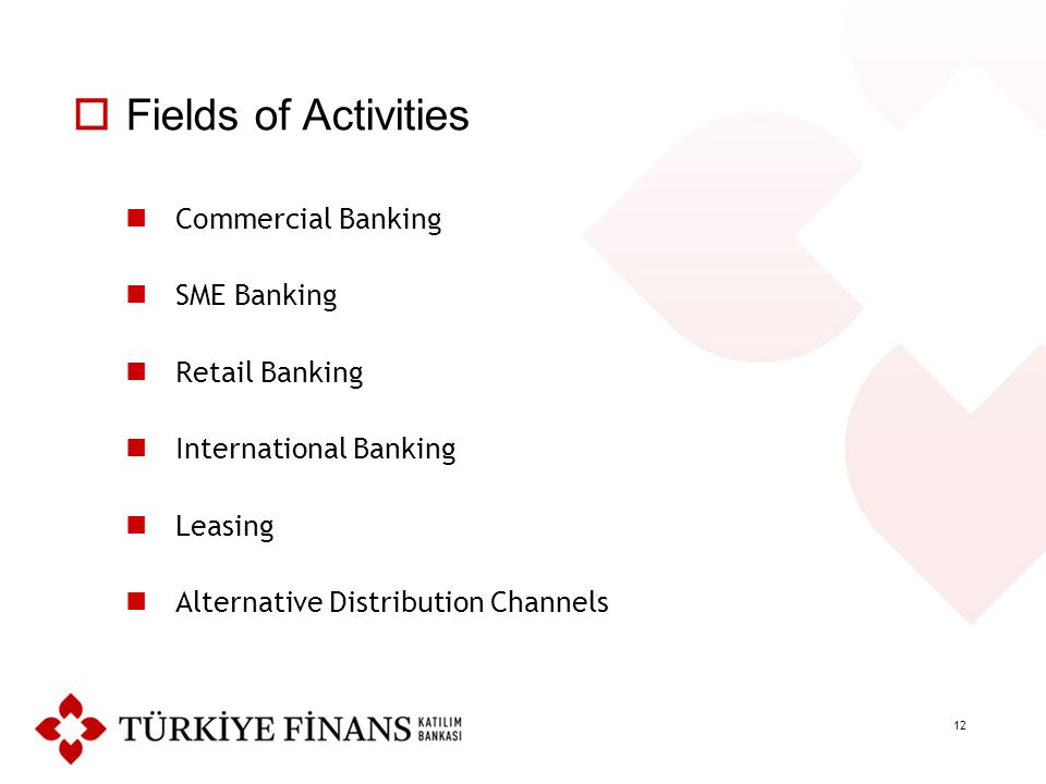 12  Fields of Activities Commercial Banking SME Banking Retail Banking International Banking Leasing Alternative Distribution Channels