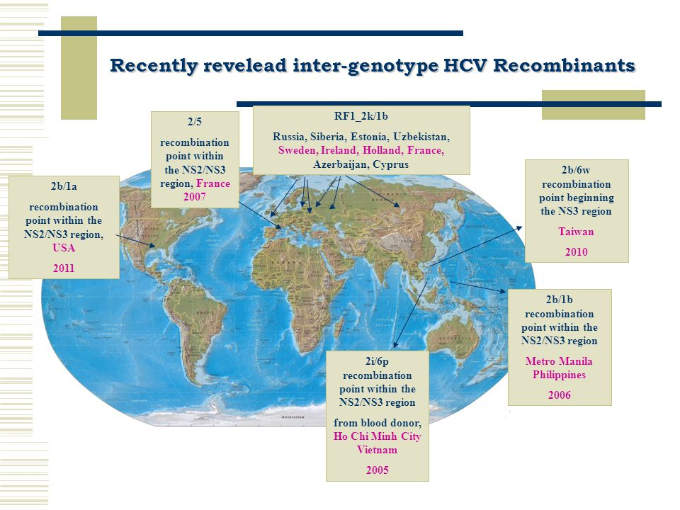 Recently revelead intra-genotype HCV Recombinants 1b/1a recombination point within the NS5B Peru 2004 1a/1c two recombination points within the E1-E2 regions Japan 2006 1a/1c five recombination points within the core- NS3 regions India 2008 1b/1a recombination point within the core Uruguay 2009