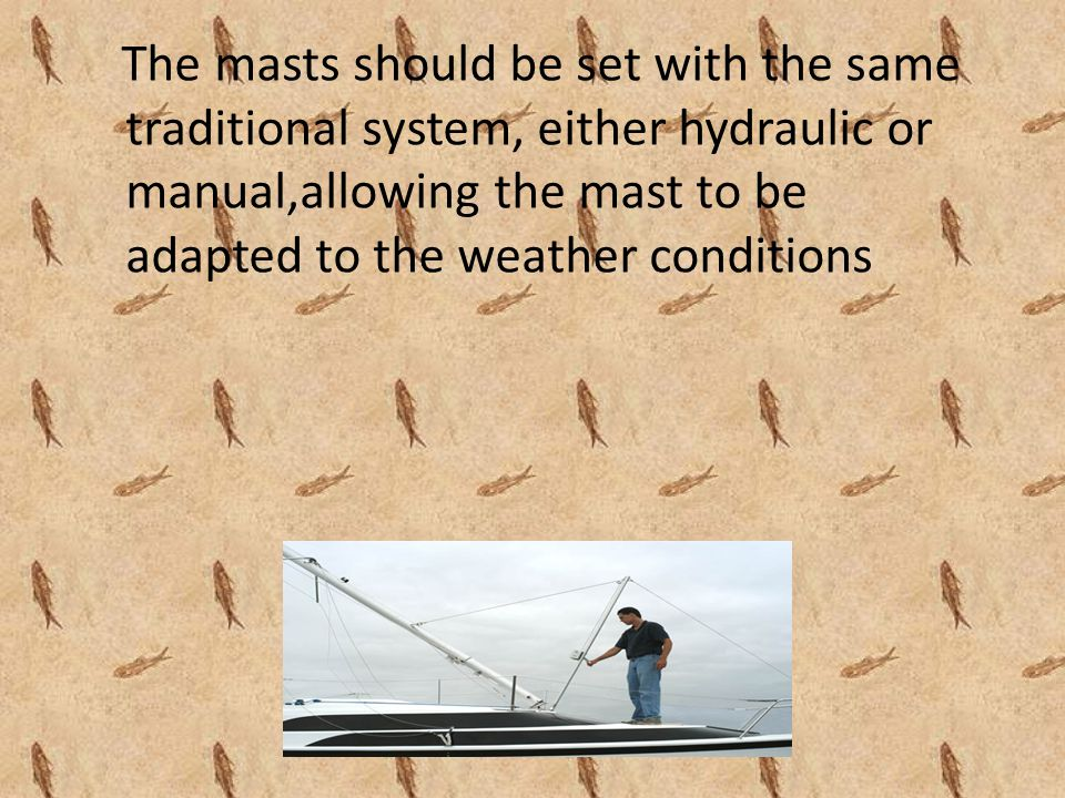 The masts should be set with the same traditional system, either hydraulic or manual,allowing the mast to be adapted to the weather conditions