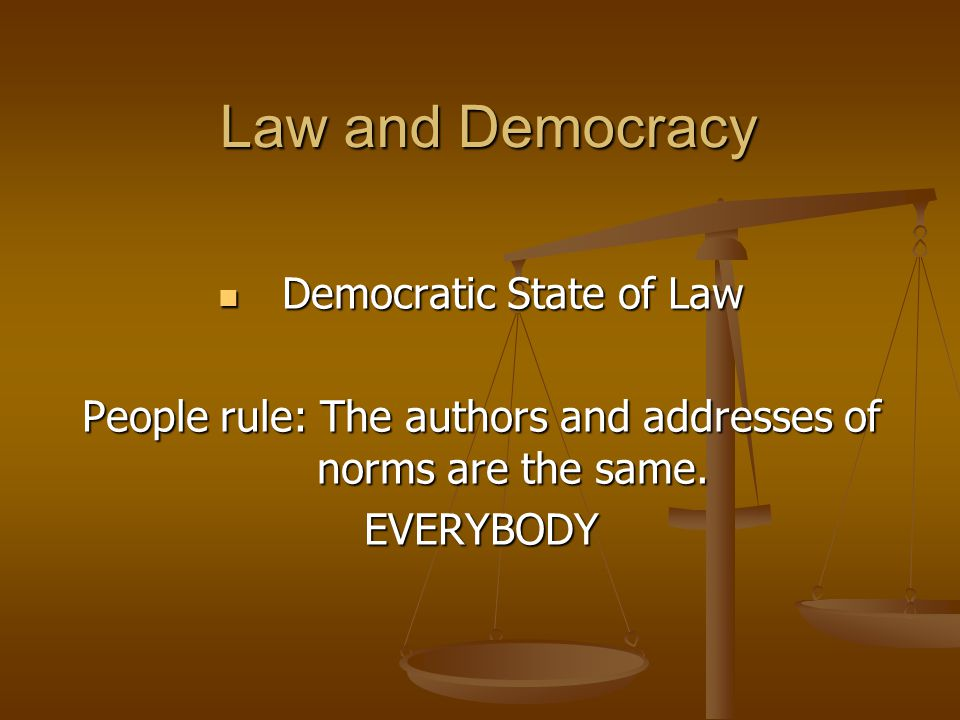 Traditional liberties Traditional liberties Guarantee of the citizen's membership of the legal community Guarantee of the citizen's membership of the legal community Due process of law Due process of law Welfare rights Welfare rights Equal rights of participation in the public debate.
