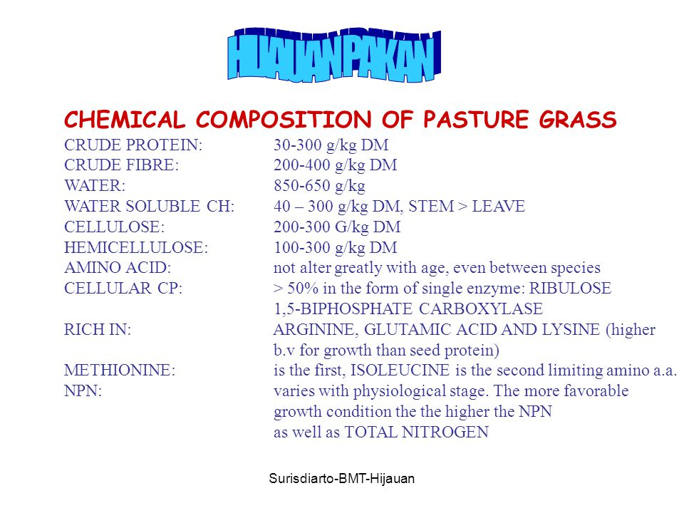 Surisdiarto-BMT-Hijauan CHEMICAL COMPOSITION OF PASTURE GRASS CRUDE PROTEIN: g/kg DM CRUDE FIBRE: g/kg DM WATER: g/kg WATER SOLUBLE CH: 40 – 300 g/kg DM, STEM > LEAVE CELLULOSE: G/kg DM HEMICELLULOSE: g/kg DM AMINO ACID: not alter greatly with age, even between species CELLULAR CP: > 50% in the form of single enzyme: RIBULOSE 1,5-BIPHOSPHATE CARBOXYLASE RICH IN: ARGININE, GLUTAMIC ACID AND LYSINE (higher b.v for growth than seed protein) METHIONINE: is the first, ISOLEUCINE is the second limiting amino a.a.