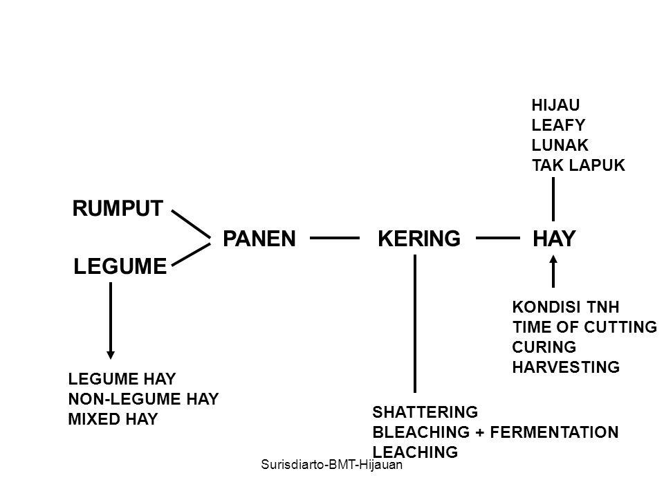 RUMPUT LEGUME PANENKERINGHAY SHATTERING BLEACHING + FERMENTATION LEACHING HIJAU LEAFY LUNAK TAK LAPUK LEGUME HAY NON-LEGUME HAY MIXED HAY KONDISI TNH TIME OF CUTTING CURING HARVESTING