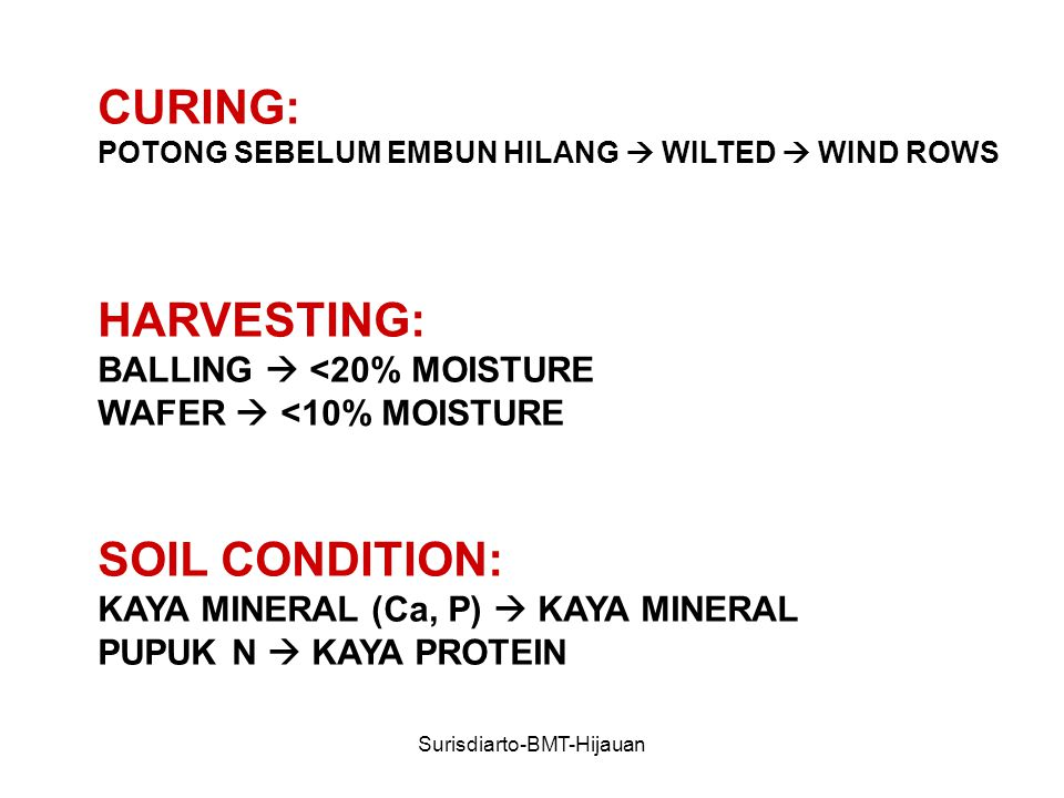 Surisdiarto-BMT-Hijauan CURING: POTONG SEBELUM EMBUN HILANG  WILTED  WIND ROWS HARVESTING: BALLING  <20% MOISTURE WAFER  <10% MOISTURE SOIL CONDITION: KAYA MINERAL (Ca, P)  KAYA MINERAL PUPUK N  KAYA PROTEIN