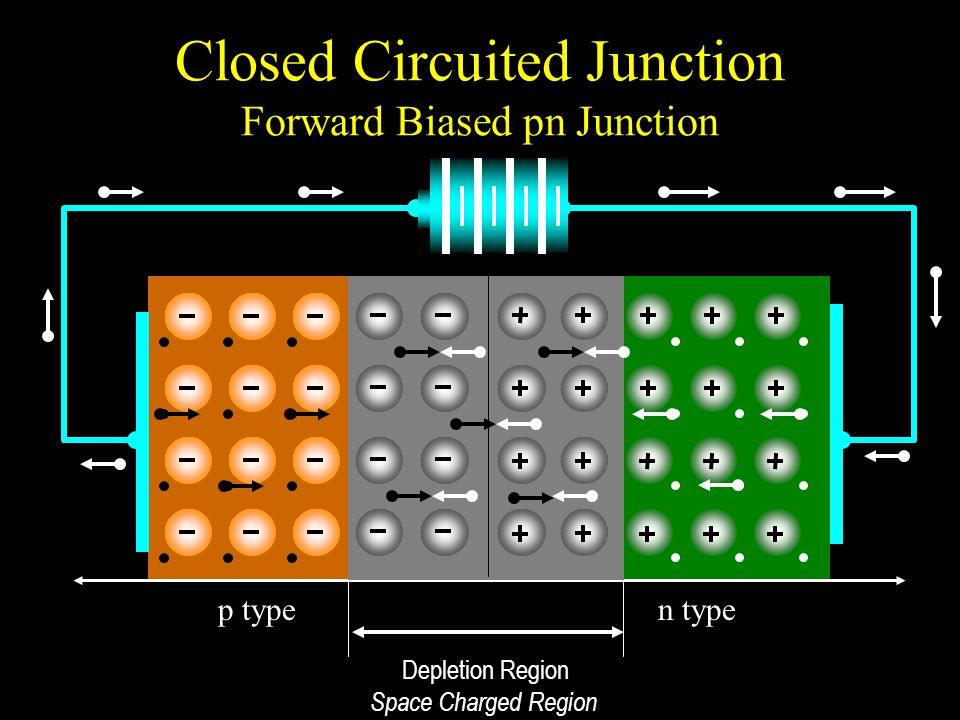 Closed Circuited Junction Forward Biased pn Junction p typen type Depletion Region Space Charged Region