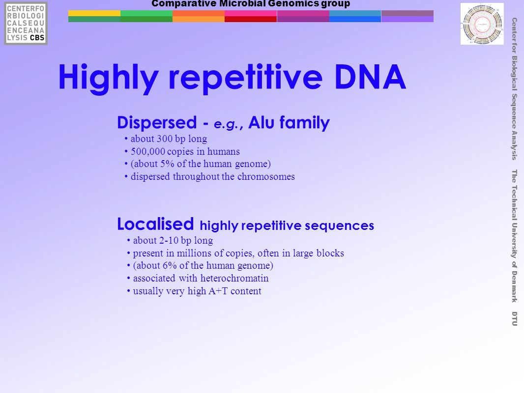 Comparative Microbial Genomics group Center for Biological Sequence Analysis The Technical University of Denmark DTU Highly repetitive DNA Dispersed -