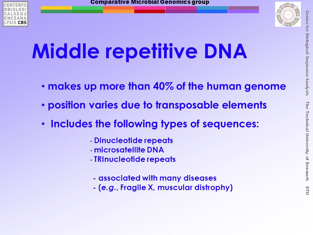 Comparative Microbial Genomics group Center for Biological Sequence Analysis The Technical University of Denmark DTU Middle repetitive DNA makes up mo