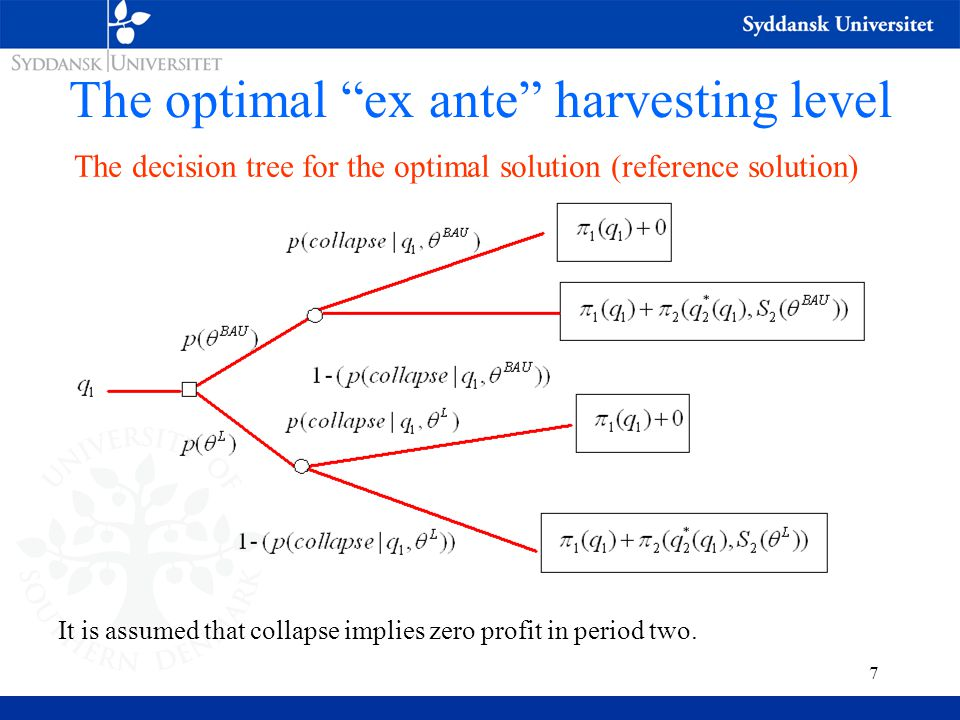 7 The optimal ex ante harvesting level The decision tree for the optimal solution (reference solution) It is assumed that collapse implies zero profit in period two.