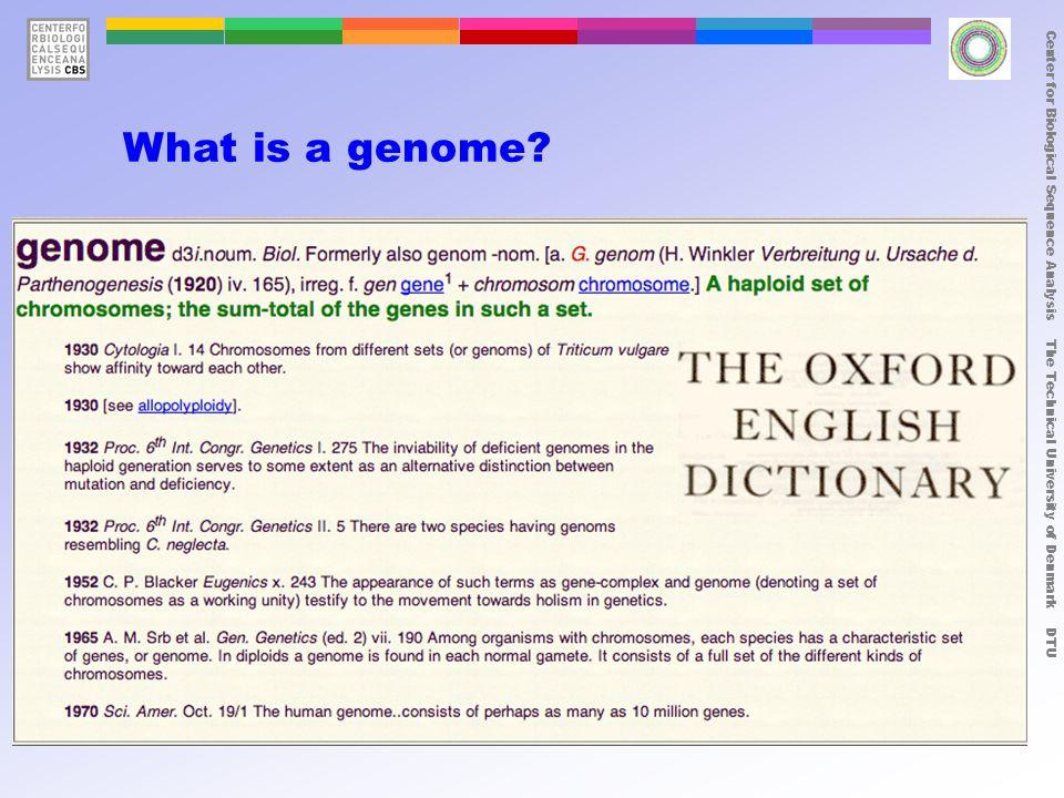 Center for Biological Sequence Analysis The Technical University of Denmark DTU Organism# bp#genes  -X174 53869 Escherichia coli4,600,0004288 Saccharomyces cerevisiae13,000,0005885 Caenorhabditis elegans~100,000,000~14,000 Arabidopsis thaliana~120,000,000~10,000 Drosophila melanogastor~180,000,000~12,000 Homo sapiens~3,400,000,000~25,000