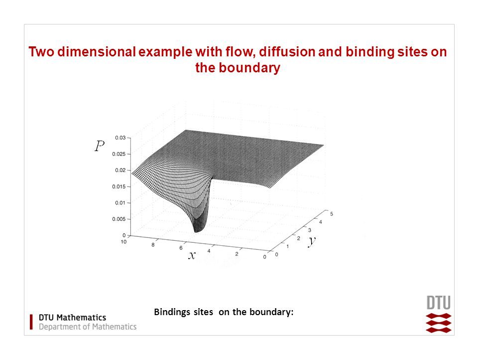 Two dimensional example with flow, diffusion and binding sites on the boundary Bindings sites on the boundary: