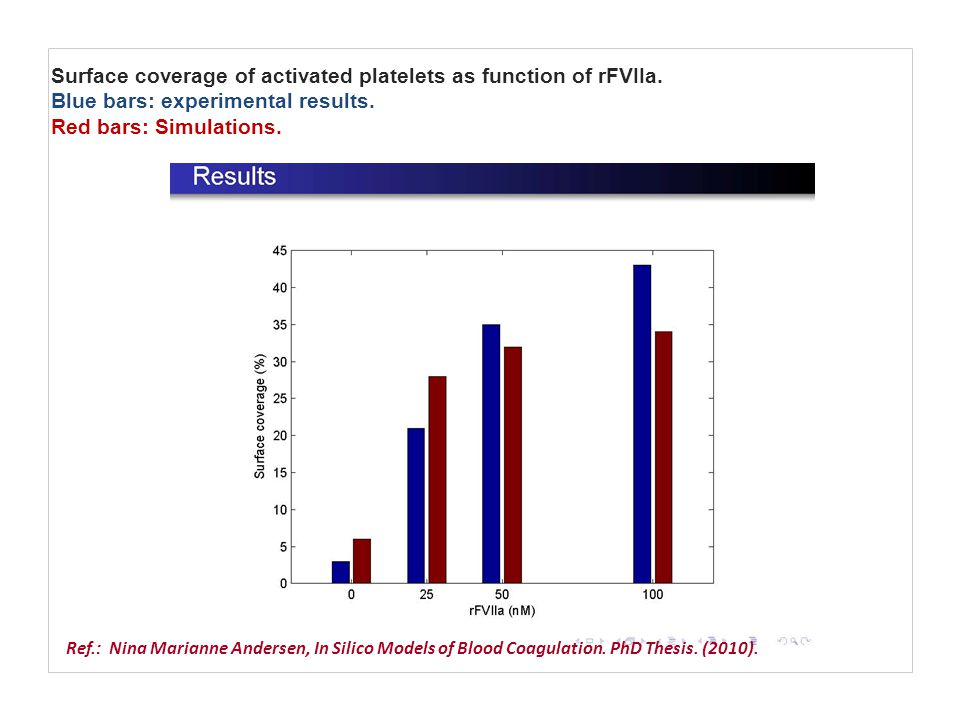 Surface coverage of activated platelets as function of rFVIIa. Blue bars: experimental results. Red bars: Simulations. Ref.: Nina Marianne Andersen, I
