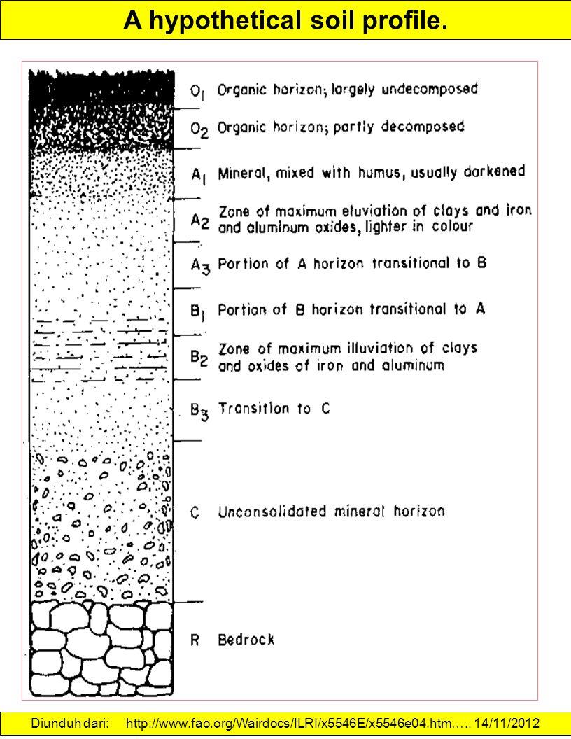 A hypothetical soil profile. Diunduh dari: http://www.fao.org/Wairdocs/ILRI/x5546E/x5546e04.htm….. 14/11/2012