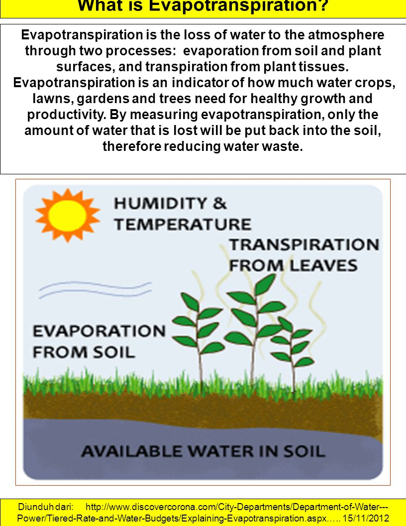 What is Evapotranspiration? Evapotranspiration is the loss of water to the atmosphere through two processes: evaporation from soil and plant surfaces,