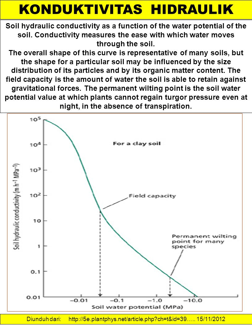 KONDUKTIVITAS HIDRAULIK Soil hydraulic conductivity as a function of the water potential of the soil. Conductivity measures the ease with which water