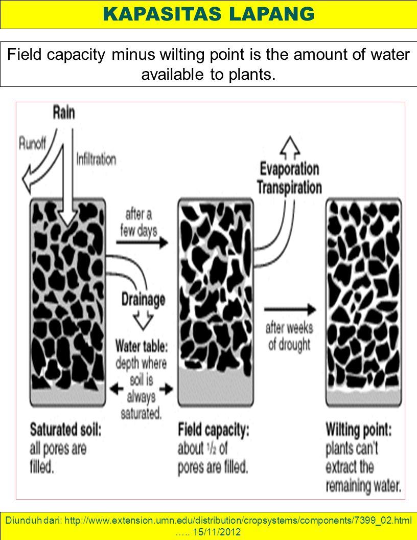 KAPASITAS LAPANG Field capacity minus wilting point is the amount of water available to plants. Diunduh dari: http://www.extension.umn.edu/distributio