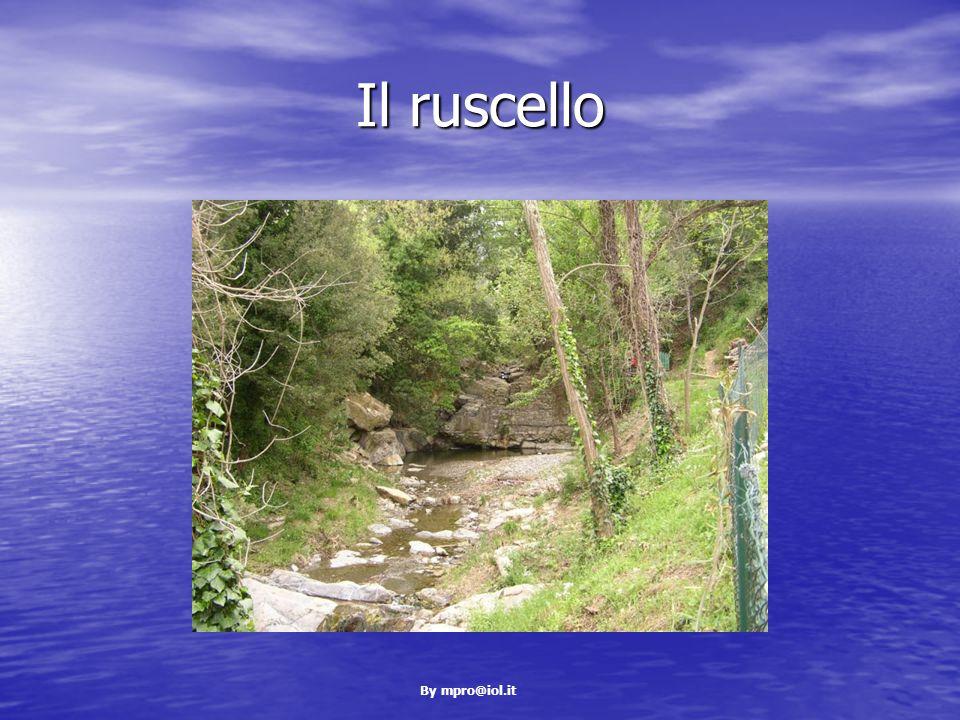 By mpro@iol.it Il ruscello