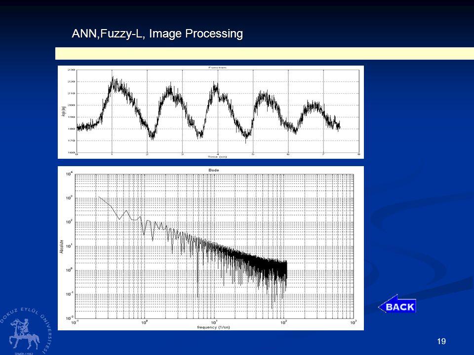 19 ANN,Fuzzy-L, Image Processing