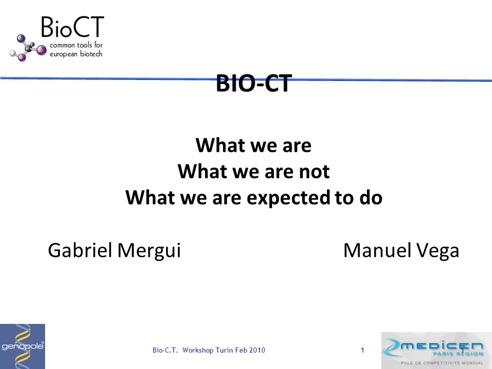 11 BIO-CT What we are What we are not What we are expected to do Gabriel MerguiManuel Vega Bio-C.T.