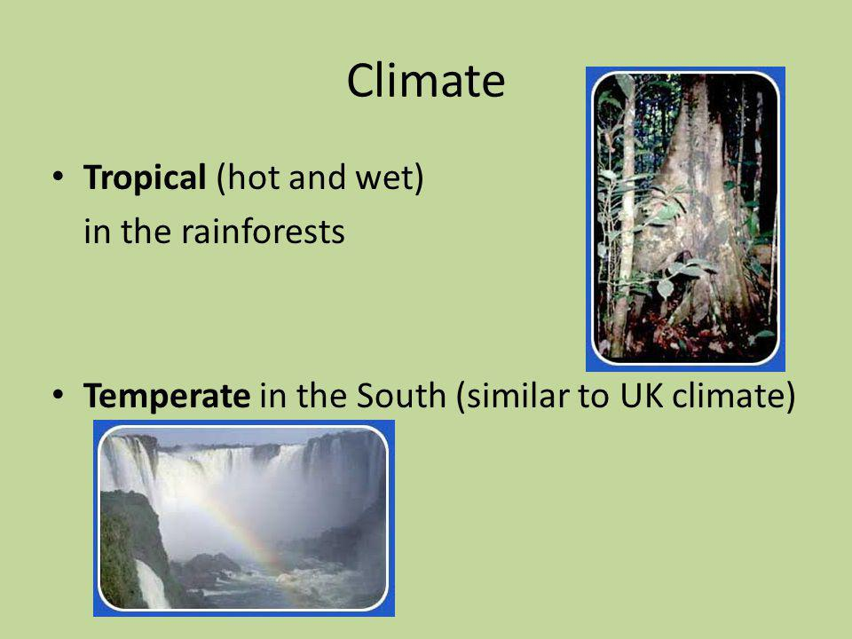 Climate Tropical (hot and wet) in the rainforests Temperate in the South (similar to UK climate)