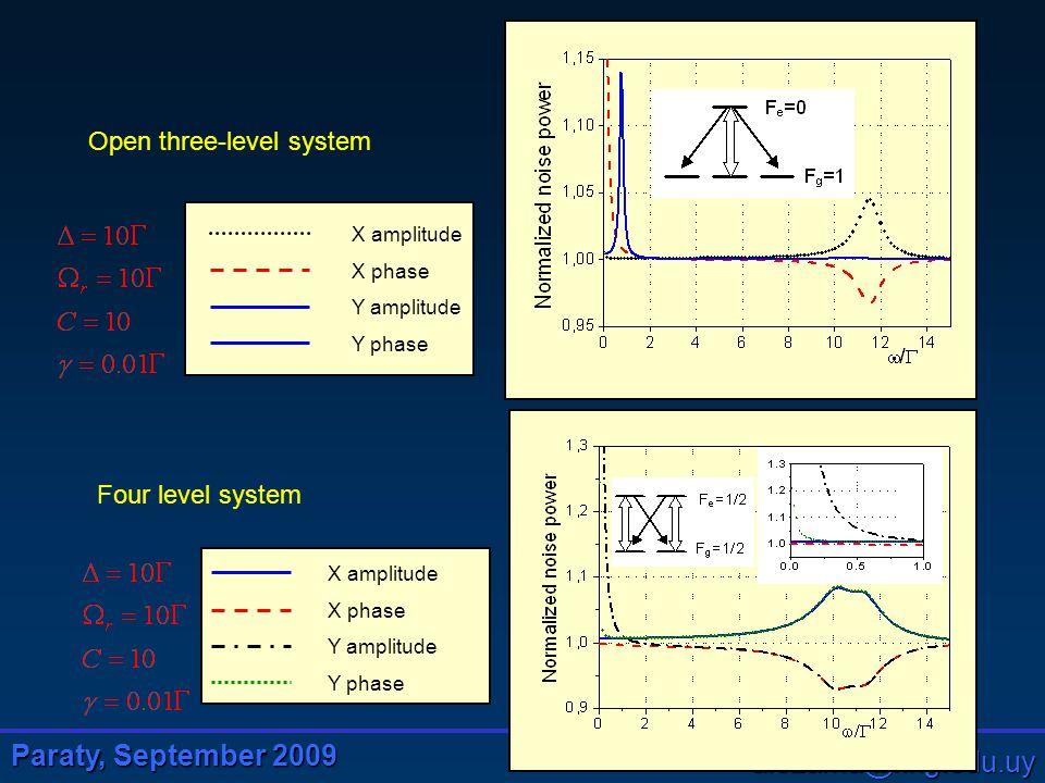 Paraty, September 2009 alezama@fing.edu.uy Open three-level system Four level system X amplitude X phase Y amplitude Y phase X amplitude X phase Y amplitude Y phase