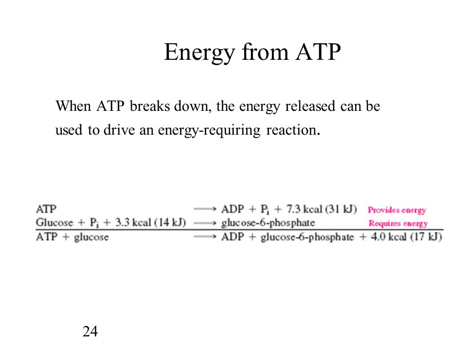Energy from ATP When ATP breaks down, the energy released can be used to drive an energy-requiring reaction.
