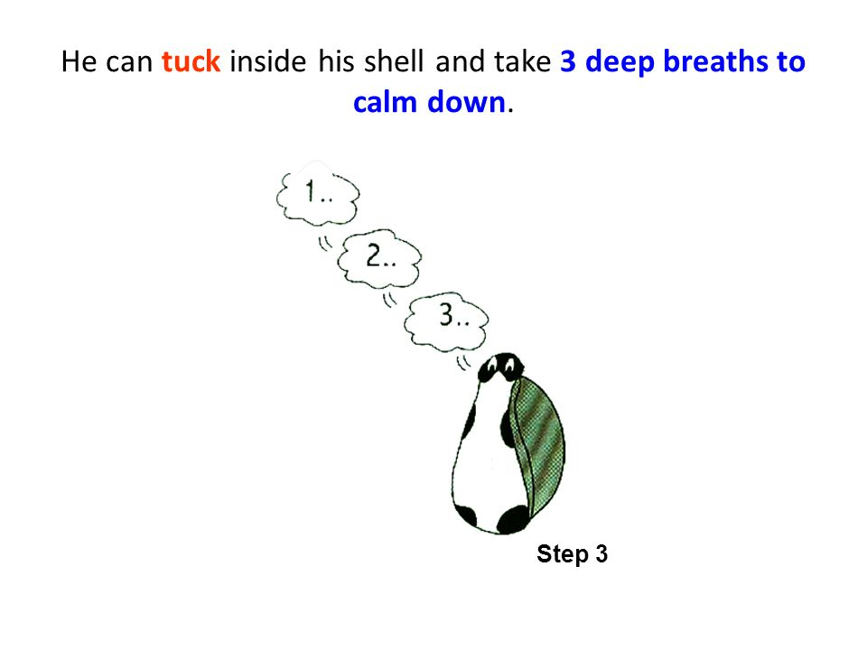 He can tuck inside his shell and take 3 deep breaths to calm down. Step 3