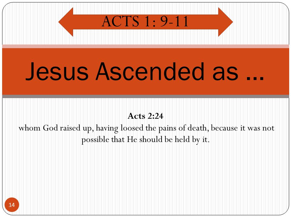 14 Jesus Ascended as … ACTS 1: 9-11 Acts 2:24 whom God raised up, having loosed the pains of death, because it was not possible that He should be held by it.
