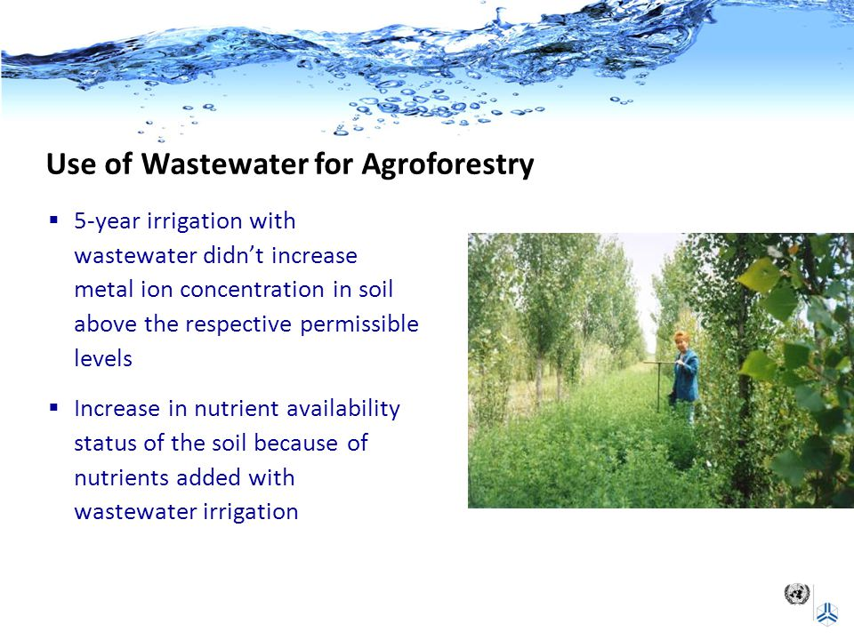 Use of Wastewater for Agroforestry  5-year irrigation with wastewater didn't increase metal ion concentration in soil above the respective permissibl