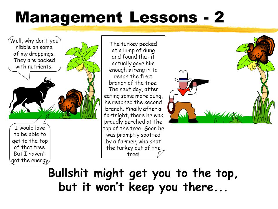 Management Lessons - 2 I would love to be able to get to the top of that tree.