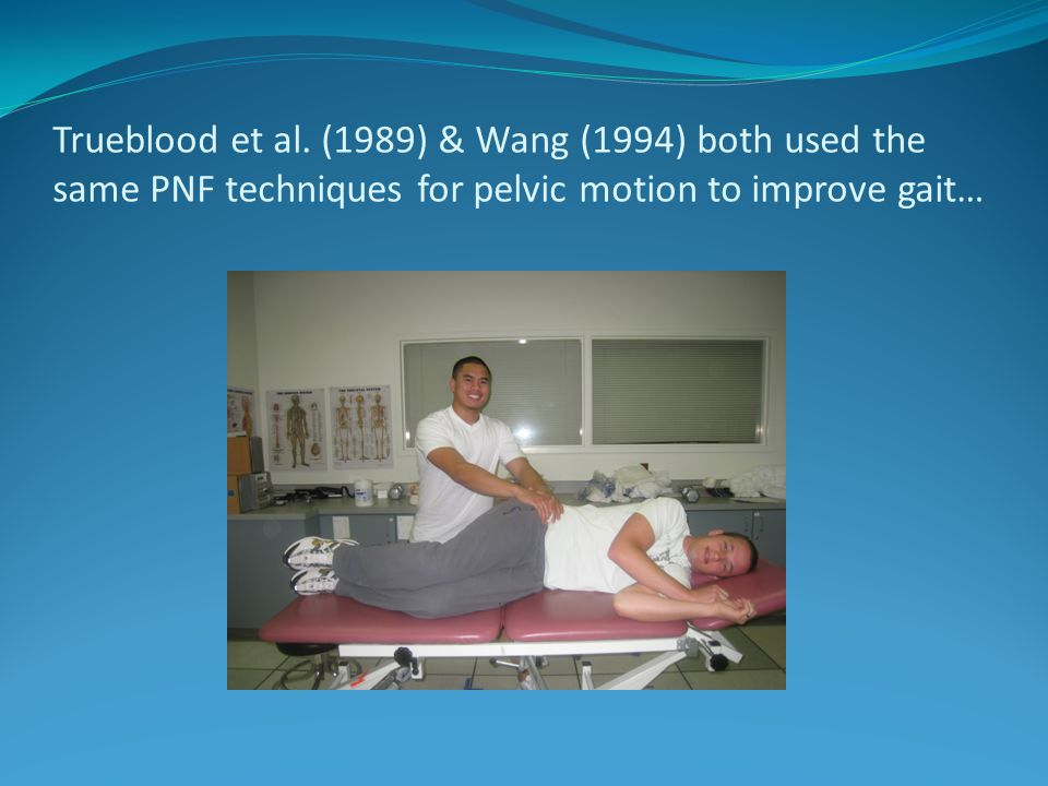 Trueblood et al. (1989) & Wang (1994) both used the same PNF techniques for pelvic motion to improve gait…