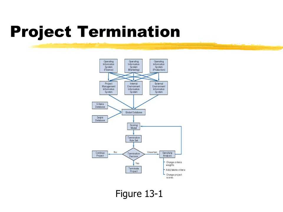 Project Termination Figure 13-1