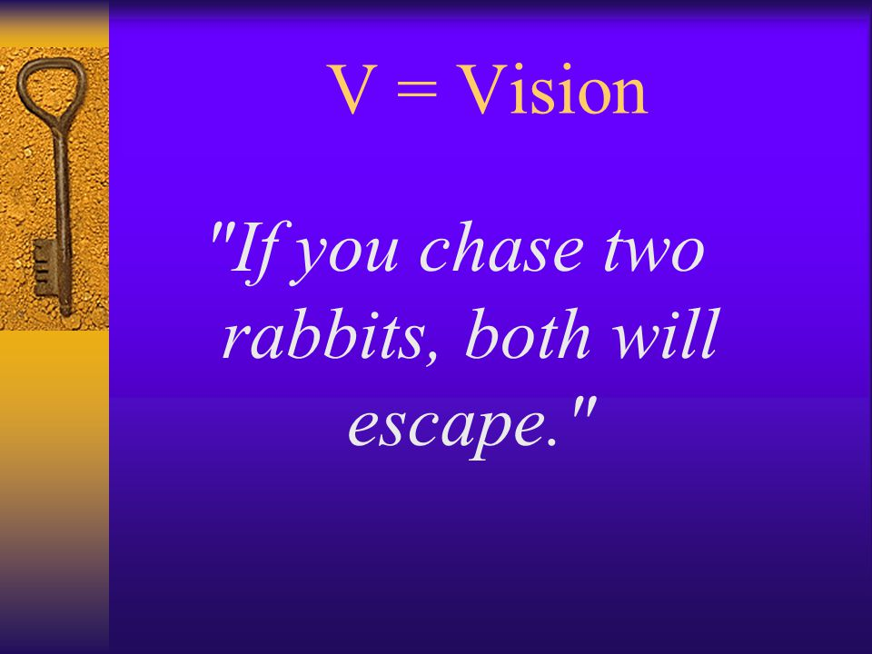 V = Vision If you chase two rabbits, both will escape.