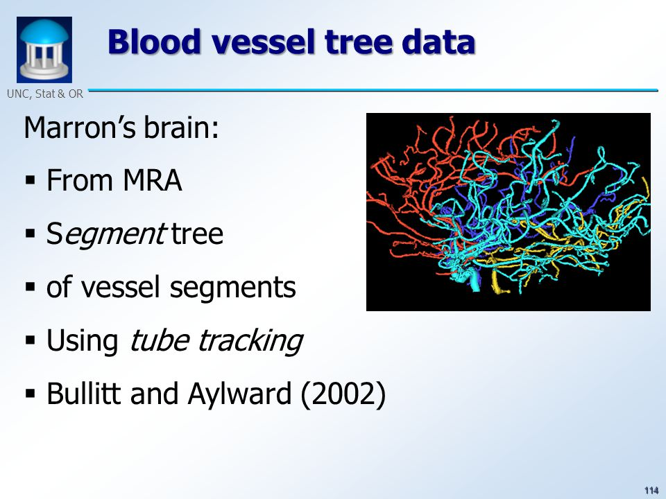 114 UNC, Stat & OR Blood vessel tree data Marron's brain:  From MRA  Segment tree  of vessel segments  Using tube tracking  Bullitt and Aylward (2002)