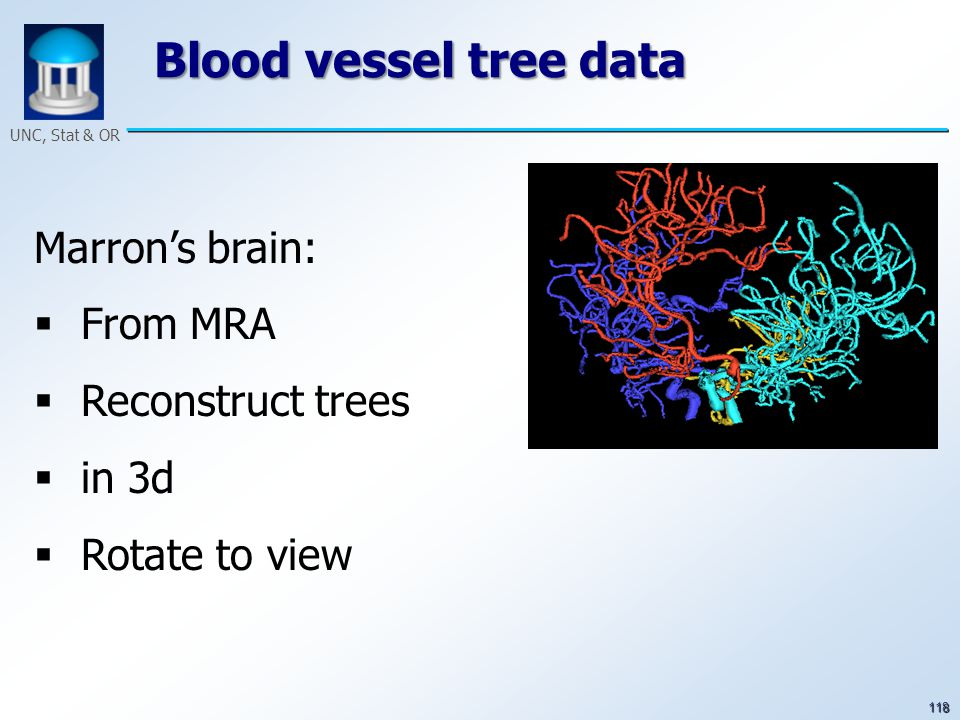 118 UNC, Stat & OR Blood vessel tree data Marron's brain:  From MRA  Reconstruct trees  in 3d  Rotate to view