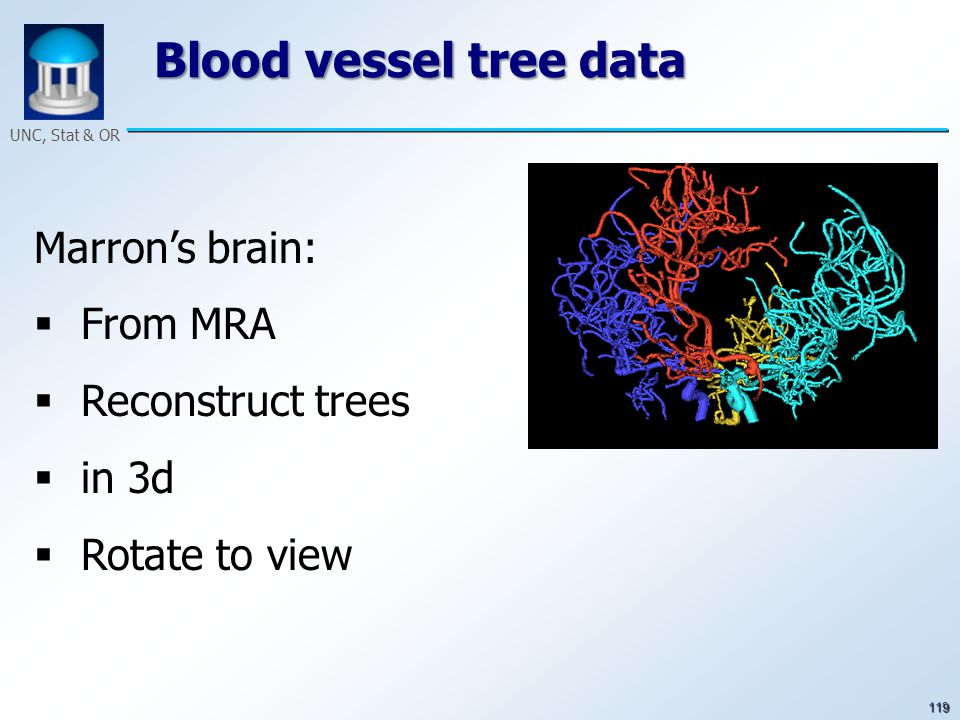 119 UNC, Stat & OR Blood vessel tree data Marron's brain:  From MRA  Reconstruct trees  in 3d  Rotate to view