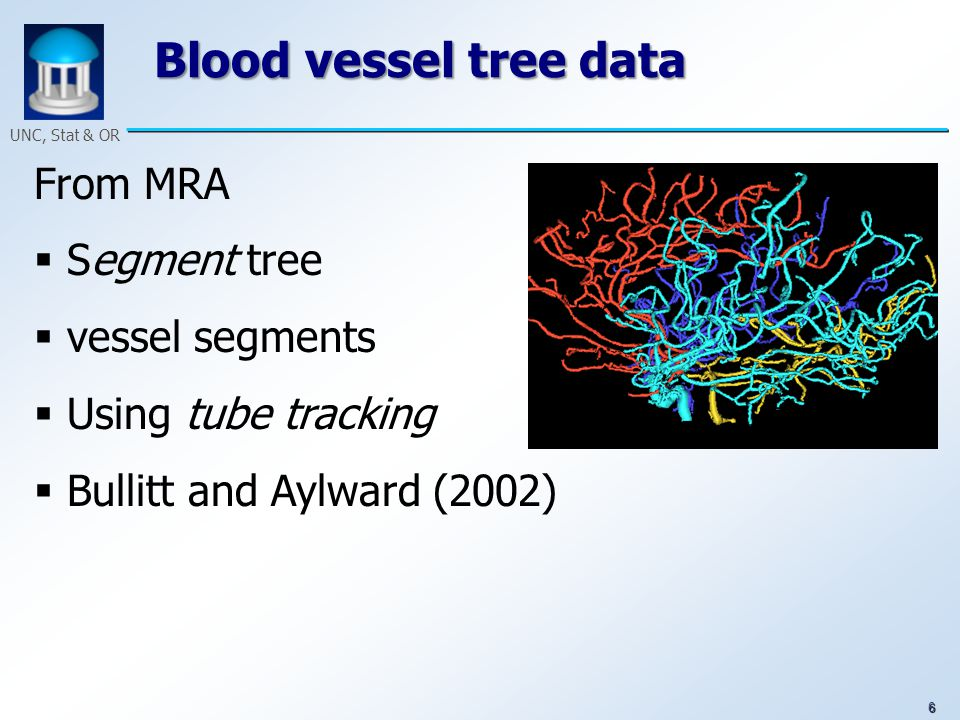 6 UNC, Stat & OR Blood vessel tree data From MRA  Segment tree  vessel segments  Using tube tracking  Bullitt and Aylward (2002)