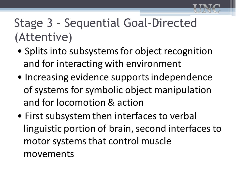 Stage 3 – Sequential Goal-Directed (Attentive) Splits into subsystems for object recognition and for interacting with environment Increasing evidence