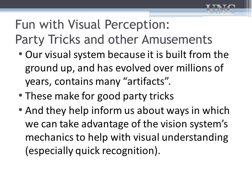 Fun with Visual Perception: Party Tricks and other Amusements Our visual system because it is built from the ground up, and has evolved over millions
