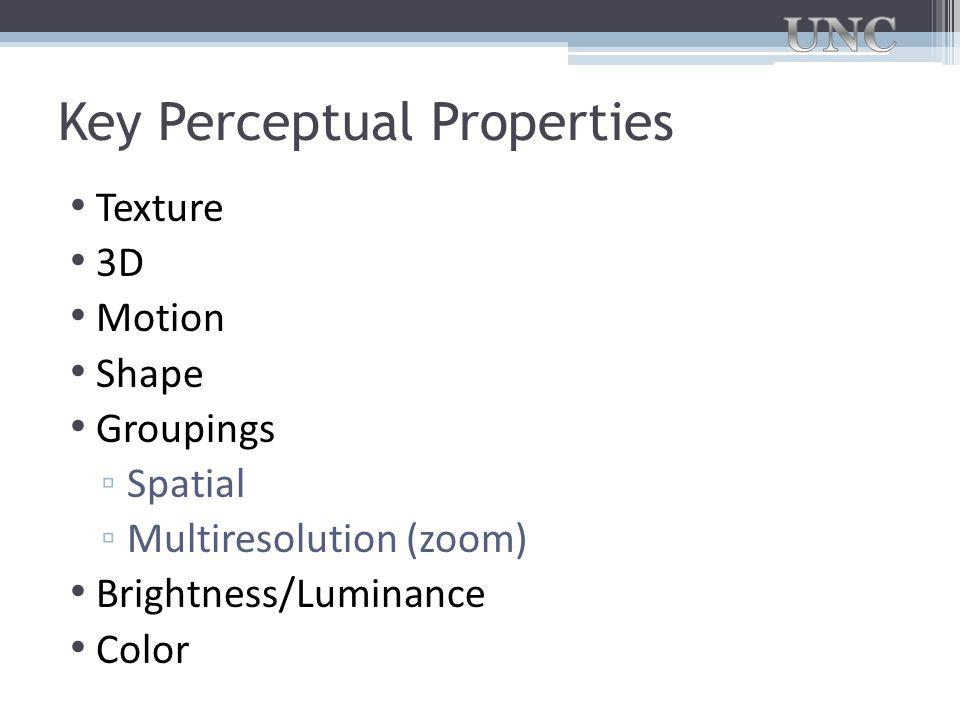 Key Perceptual Properties Texture 3D Motion Shape Groupings ▫ Spatial ▫ Multiresolution (zoom) Brightness/Luminance Color