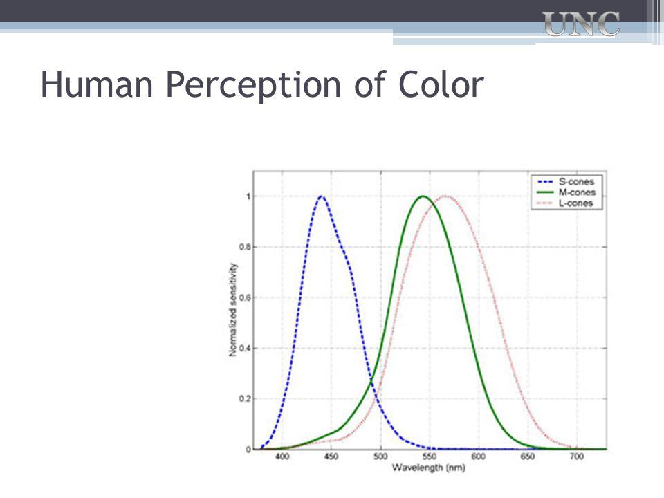Human Perception of Color
