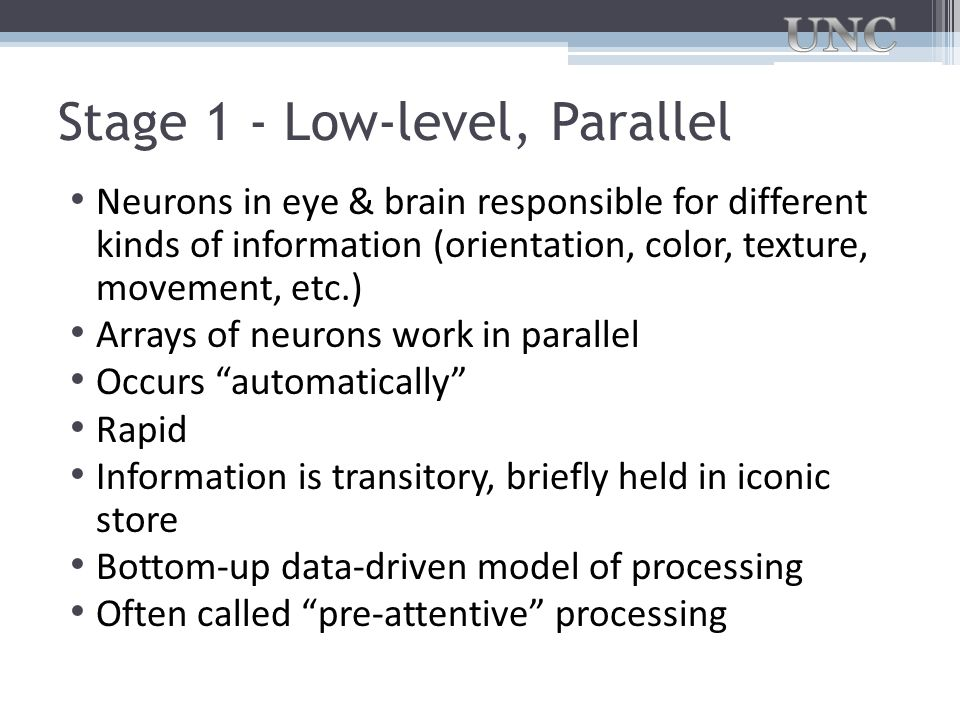 Stage 1 - Low-level, Parallel Neurons in eye & brain responsible for different kinds of information (orientation, color, texture, movement, etc.) Arra