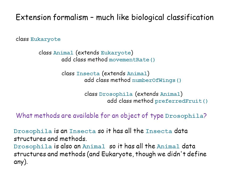 Extension formalism – much like biological classification class Eukaryote class Animal (extends Eukaryote ) add class method movementRate() class Insecta (extends Animal ) add class method numberOfWings() class Drosophila (extends Animal ) add class method preferredFruit() Drosophila is an Insecta so it has all the Insecta data structures and methods.