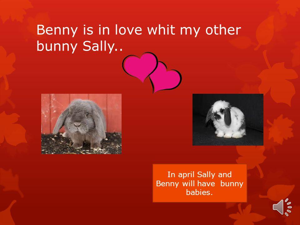 The food hi likes…  Benny like carrots, fruits and vegitables.
