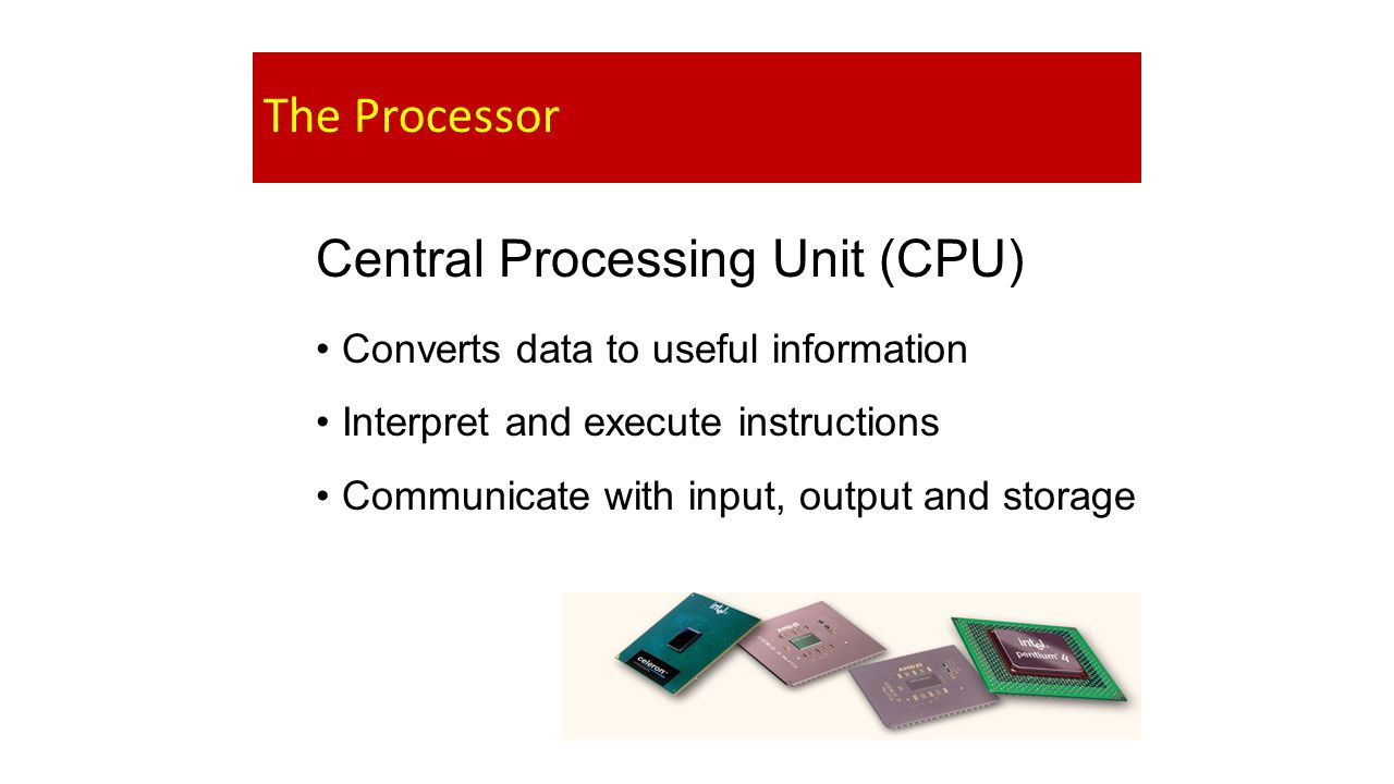 The Processor Central Processing Unit (CPU) Converts data to useful information Interpret and execute instructions Communicate with input, output and storage